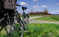 rower na wiosnę